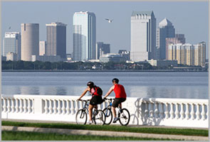 Tampa Bay Real Estate Listings